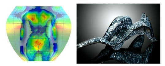 Figure4_Skin pressure map & Figure5_the Beast