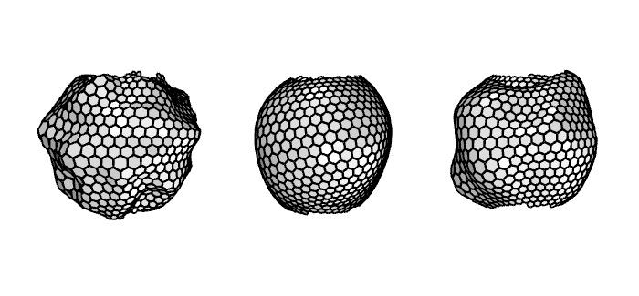BFF | Tessellation Tests