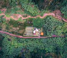 Rwanda Muraho Vunga Interamerican Coffee