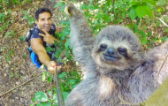 Sloth Selfie - Sloth facts