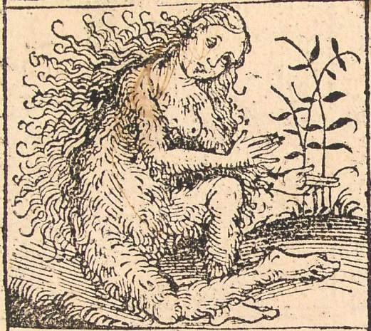 nuremberg_chronicles_-_strange_people_-_hairy_lady_xiiv