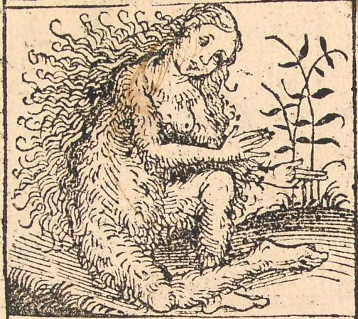 nuremberg_chronicles_-_strange_people_-_hairy_lady_xiiv