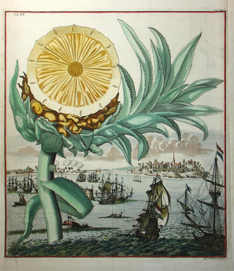 pineapple theft 18th century