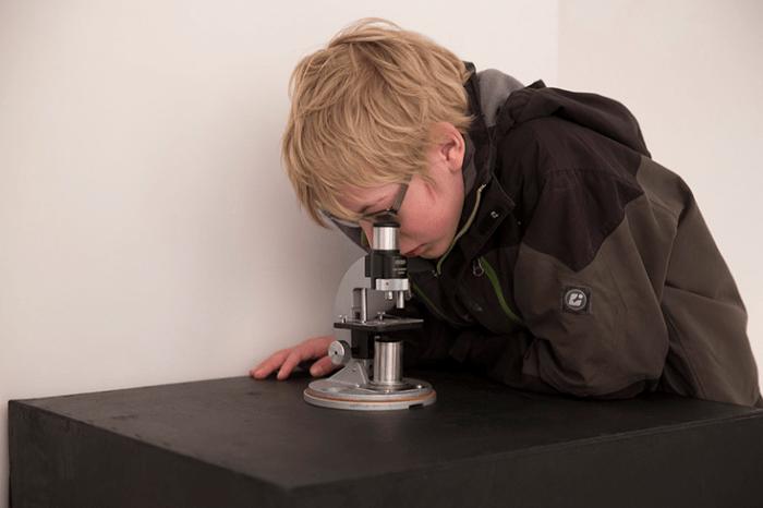 Micro_Pets_Microscope_Micro Pets_