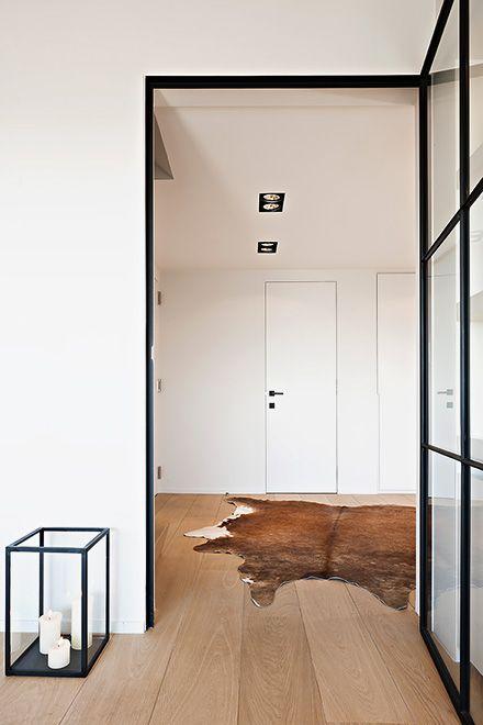 Stalen deur tussen hal en woonkamer of keuken  Interieur