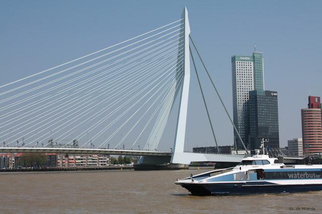 5 design hotspots in Rotterdam