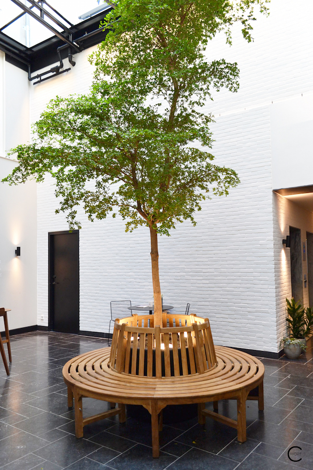 Entry with tree | Ink Hotel Amsterdam | Tried + Tested | Design Hotel | Boutique Hotel | Picture © By C-More