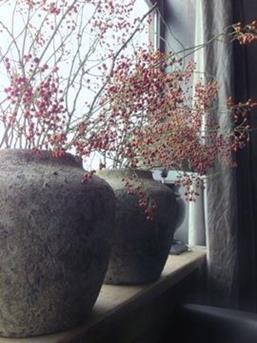 Vensterbanken vol met planten en accessoires of juist