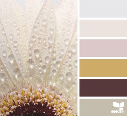 Je huis inrichten met natuurlijke kleuren  Interieur