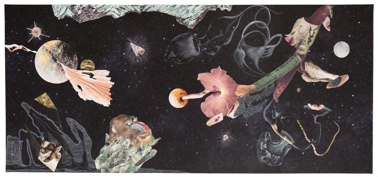 Naturaleza cosmética. Técnica mixta (impresión glicée sobre papel de celulosa, collage, grafito, acuarela y hojilla), 150 x 320 cm. 2016. Fotografía: cortesía, Nueveochenta.