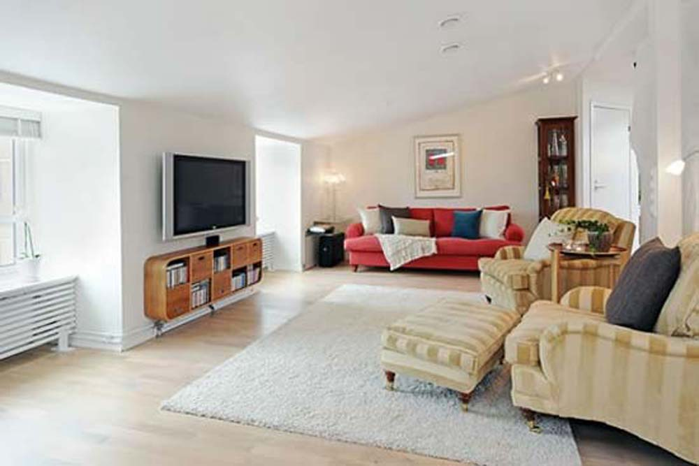 Which area rug is the best for your room   Interior