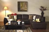 Diana Brown Leather Modern Sectional Sofa w/ Chaise