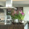 indoor-orchids-pink