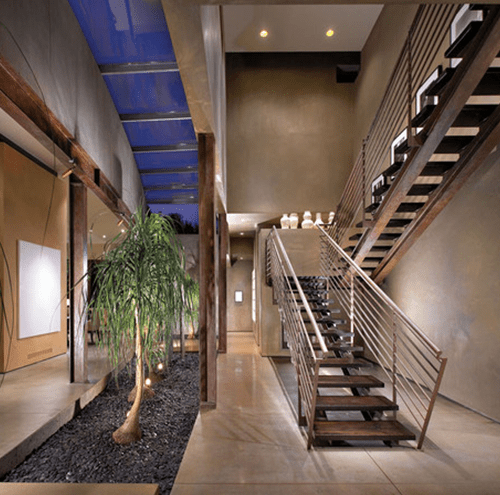 indoor-tree-500x495