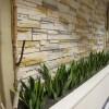 vegas-plant-design-1000x750