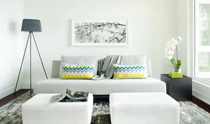 Sleek Living Room with Chevron Pillows