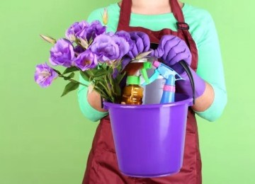 The Hassle Free Spring Cleaning Guide