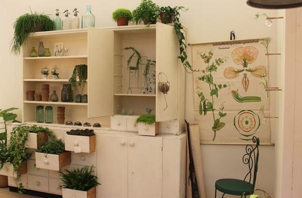 Planten in huis  InteriorInsidernl