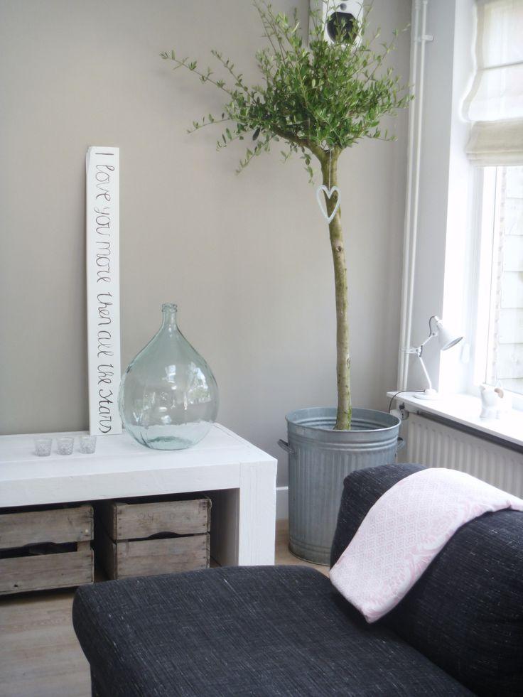 Klein boompje in huis  InteriorInsidernl