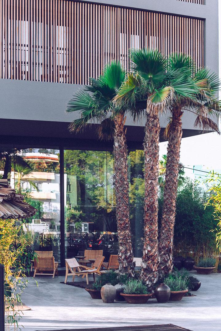Fotografía exterior entrada principal al hotel casa cook Ibiza