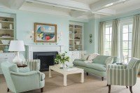 Mint Colored Traditional Living Room - Interiors By Color