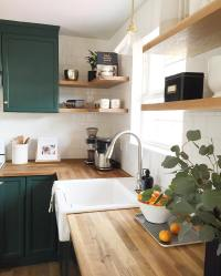 Benjamin Moore Forest Green - Interiors By Color