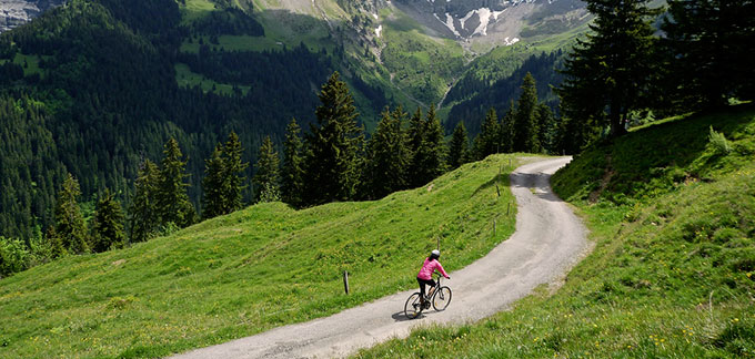 Mountain Biking Interlaken