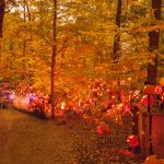 Scenes from the Jack O'Lantern Spectacular 2013 in Louisville's Iroquois Park Image Courtesy Marty Pearl_Louisville CVB