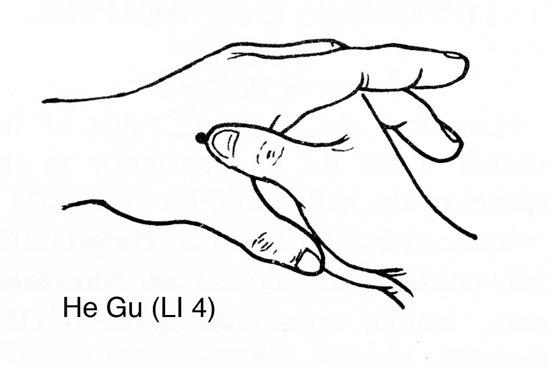 Man Dan Yang Acupuncture: The 12 Miraculous Points