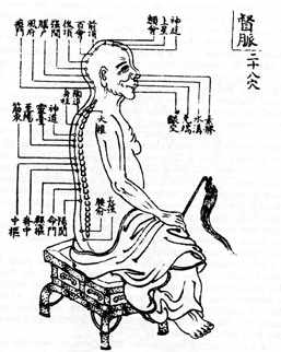 Thoughts on Daoist Physiology Fundamental to Inner Alchemy