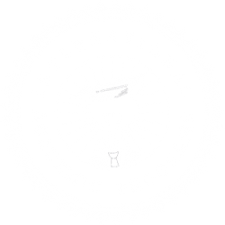 International Academic Programs