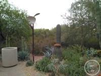 Colegios privados Arizona (25)