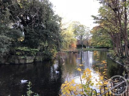 Dublin (38)