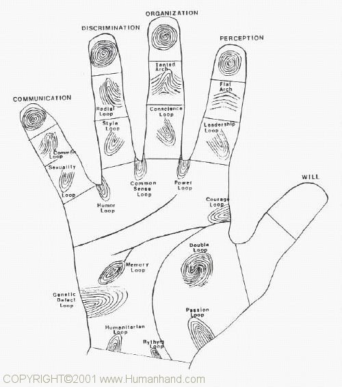 Palmistry fingerprints, free reading comprehension