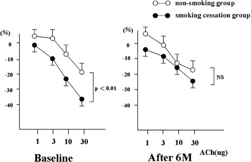 Effects of smoking cessation on coronary endothelial