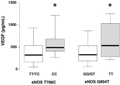 The impact of T786C and G894T polymorphisms of eNOS on