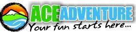 Ace Banner - logo