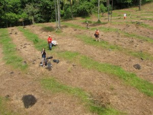 Tree Planting on the Pacuare River