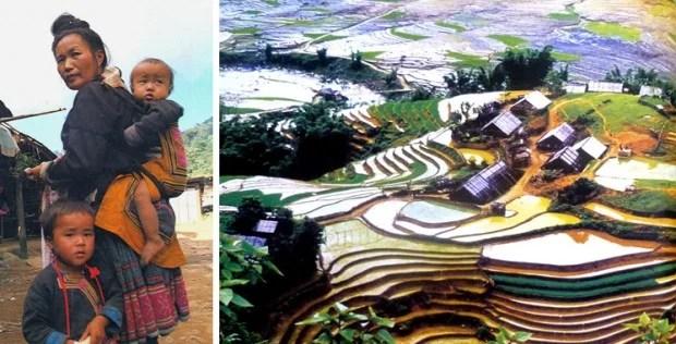 hmongdorff