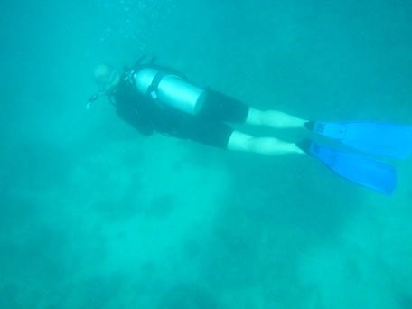 Liveaboard diving Jeff