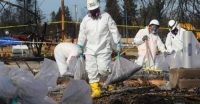 EPA Staff Objected to Agencys New Rules on Asbestos Use Internal Emails Show