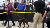 TSA to deploy more floppyear dogs because theyre less scary than pointyear dogs