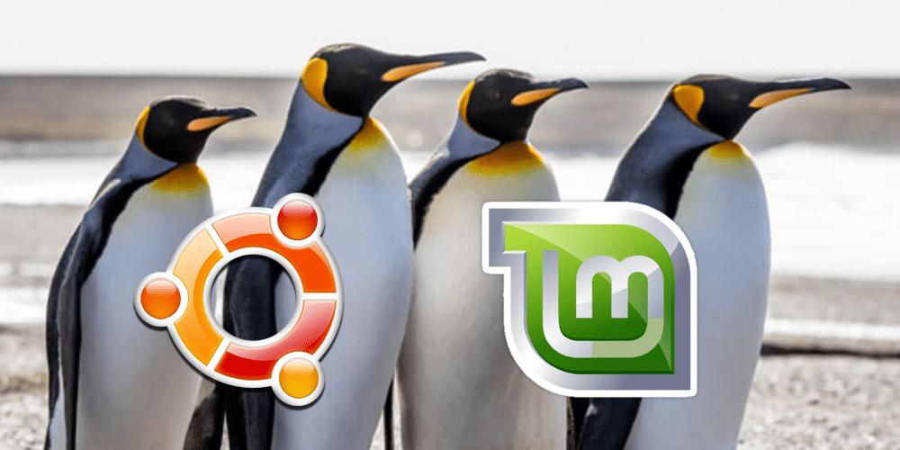 Pinguine_Ubuntu_Linux_Mint_1000x500px