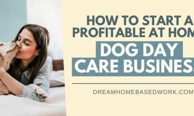 How To Start A Profitable At Home Dog Daycare Business