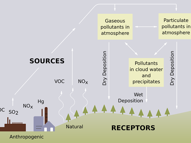 a diagram showing the causes of acid rain