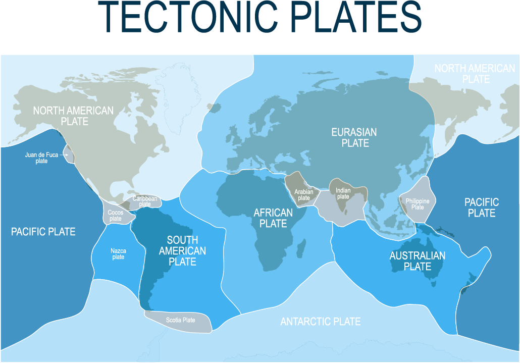 The Earth's main tectonic plates