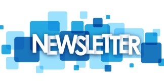 Newsletter - guest post