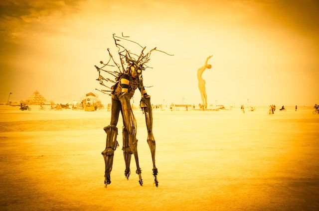 14-Burning-Man-2014-.jpg