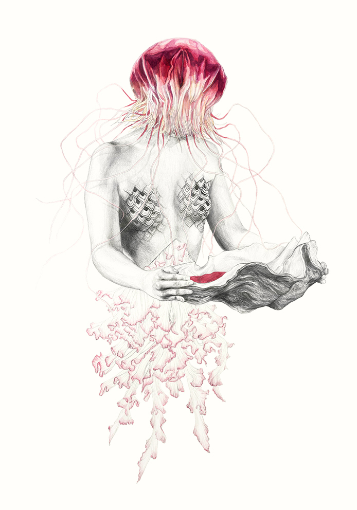 Pen and Watercolor Illustrations in Metamorfish Project by Elisa Ancori