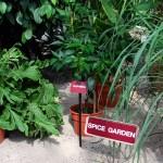 matale-spice-garden_2